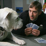 Zynga applies for a real-money gambling license in Nevada