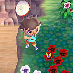 Animal Crossing: New Leaf - How to obtain and use tools (shovel, fishing rod, net, watering can, slingshot, axe...)
