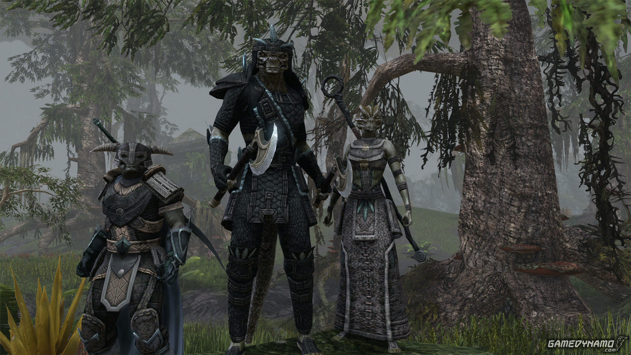Elder Scrolls Online confirmed on Mac