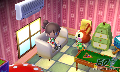Animal Crossing 3D for Nintendo 3DS