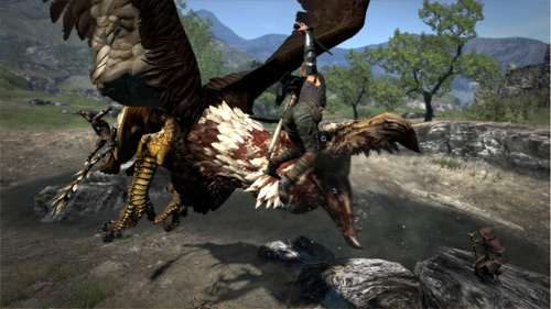 Dragon's Dogma Screenshot (PS3, Xbox 360, PC)