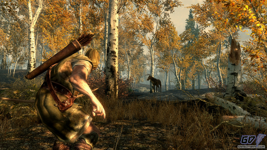 One Game to Play on a Deserted Island - The Elder Scrolls V: Skyrim